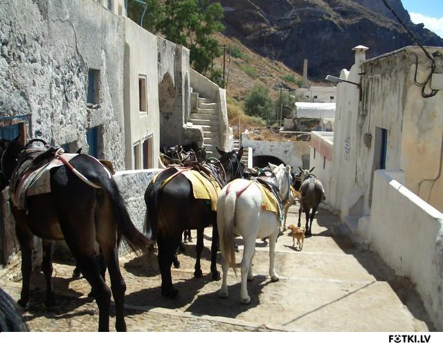 Santorini/Thira-the Old Road