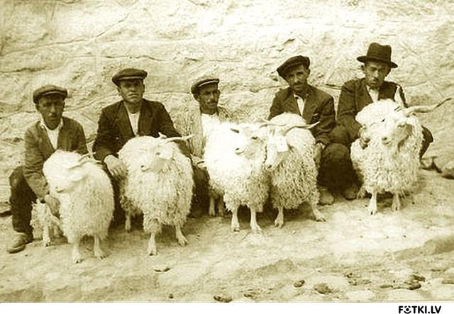 Картинки про азербайджанцев приколы, открытку брату днем