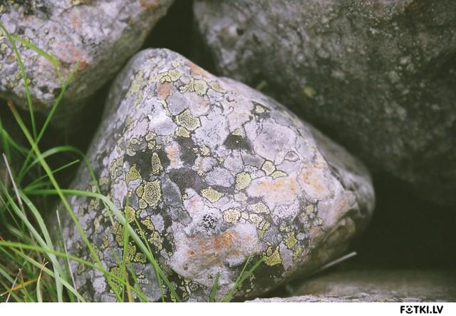 Pelekaa akmens staasti