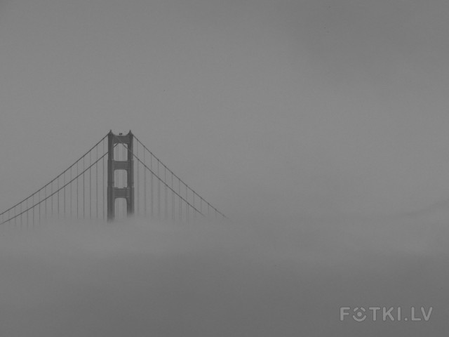 Golden Gate Bridge in Fog 1 (2009)