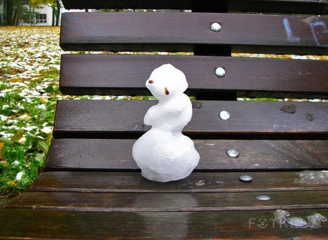 Первый снег 2009 года